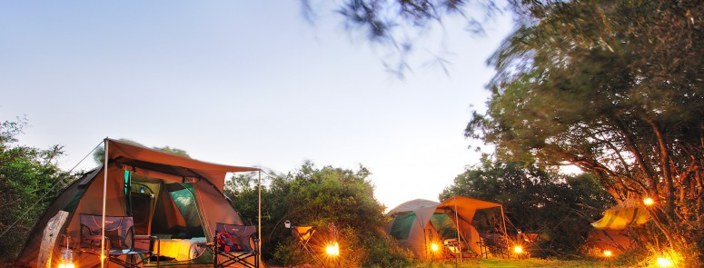 Shamwari Game Reserve and Sanbona Wildlife Reserve Reopen Explorer Camps